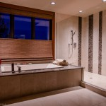 Master bathroom tub and tub shower area of 2013 Street of Dreams Custom Home 20-20 by Rick Bernard of Bernard Custom Homes.
